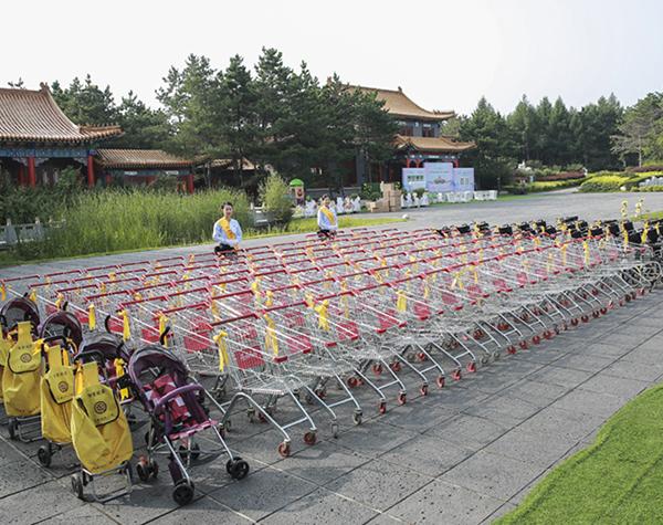 轮椅、手推车、婴儿车、便携手拉袋、助步车